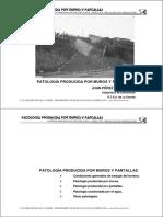 2b-Patologia muros y pantallas.pdf
