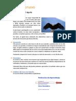 induccion_caso_estudio_u02_la_sabiduria_del_aguila.pdf