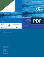 4 Belo Monte Dam Report Mar2006