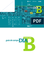 GuiaCampoDiaB_V_final.pdf