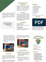 Triptico de Detector de sismos Tintinco.docx