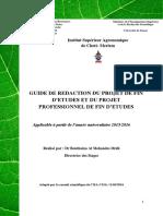 Guide de Rédaction Du PFE-PPFE. ISA-CM