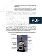 Práctica Pto. Inflamación PMCC.pdf