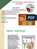 BIOLOGIA Diapositiva Grupo 3