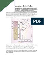 Anatomía y Fisiología Hepática
