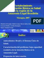 Brasssiil