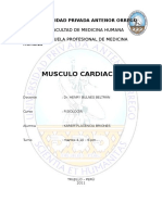 344407084 Informe Musculo Cardiaco (1)