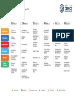Malla curricular CAPECO.pdf