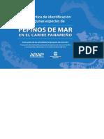 Guia-Pepino-de-MarWEB.pdf