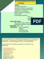 7Artrópodos-ponzoñosos-en-Chile.pdf