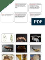 Instrumentos de La Prehistoria