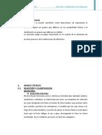 135275424-Seleecion-y-Clasificacion-de-Manzana.doc