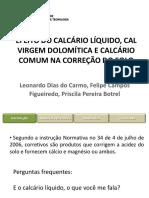 2 - Efeito do calcário líquido, cal virgem dolomítica e calcário comum na correção do solo-1.pdf