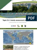 C3 C-stocks Assessment Mangroves
