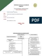 Estructura Organica de Las Municipalidades