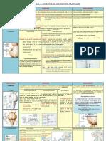 ParescranealesDEF-1er-control.pdf