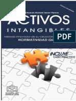 Activos Intangibles 2018
