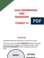 11 - Membranes