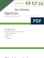 14. HISTO_3 Glándulas Anexas Digestivas
