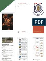 Religion y Mitologia Griega