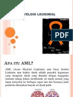 SAP AML R. 25