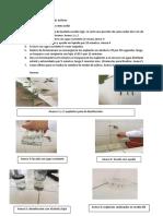 Informe Biotec Vegetal