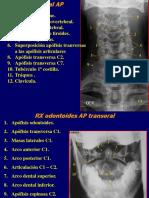 Radiología Columna