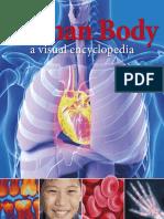 Human Body_ A Visual Encyclopedia - Brown,Morgan,Walker,Woodward (DK Publishing;2012;9780756693077;eng).pdf