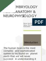 Basic Neuroanatomy Converted