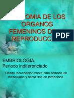 3. Anatomía y Fisiología de Vagina y Vulva Dr. Enríquez