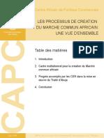 Processus de Creation Du Marche Commun Africain