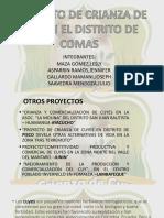 Proyecto_Semillero-Quinua