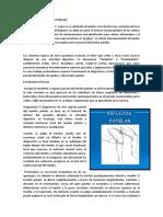 Patologia Reflejo Patelar