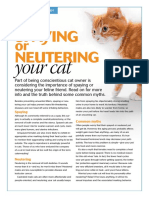 Spaying and Neutering Cat