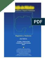 Golfo de México Contaminación e Impacto Ambiental Diagnóstico y Tendencias