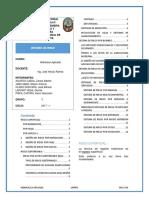 Resumen Ejecutivo Metodos de Riego Final