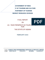 20 years perspective plan final report Assam.pdf