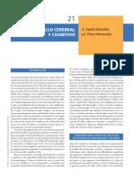 Desarrollo cognitivo y cerebral.pdf