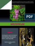 Mezereum_Homeopatía SuperEduards