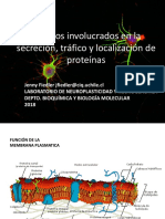 Organelos_2018_OCTUBRE_28.pdf