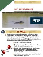 29971472 Rol Del Agua en La Nutricion Animal