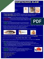 IPA-ringkas.pdf