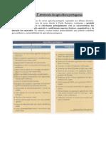 8- Problemas Estruturais Da Agricultura Portuguesa