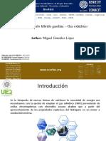 Miguel González López.pdf