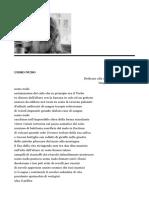 Gianni Milani.pdf