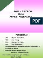 1. ANATOMI-ANALIS-1