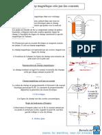 champs-magnétique-crée-par-des-courants--2010-2011(dellali).pdf