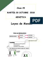 Genética 1ra Ley de Mendel