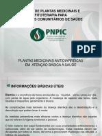 1._plantas_medicinais_antidiarreicas.ppt (1).pptx