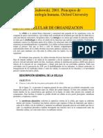 138432342-Tortora-celula.pdf